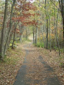 Inspiration Peak Path © Amanda Su