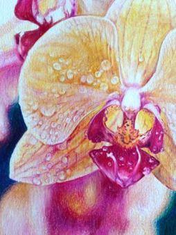 """Adriana Mahne's """"Orchid"""""""